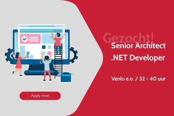 Senior-Architect-.NET-developer