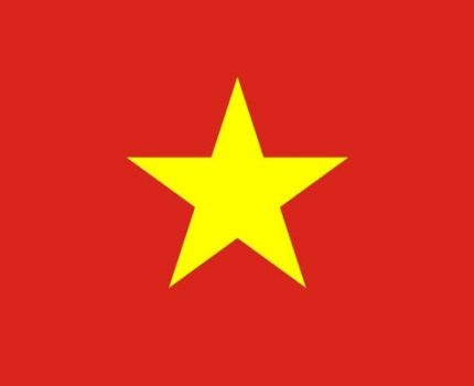 Vietnamese available